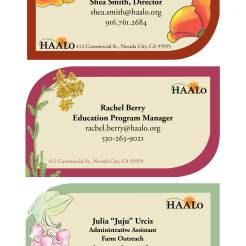 Design for HAALo, Business Card Series, 2014–2015. Program Used: InDesign and hand-drawn illustrations. Notes: Custom illustrations and color palettes for each card.